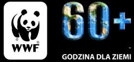 fot. WWF www.godzinadlaziemi.pl/
