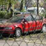 Zapomniane samochody można też znaleźć na spółdzielczych parkingach